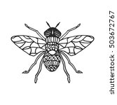 Fly Stencil Pattern Vector...