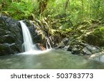 Waterfall In The Dry Evergreen...