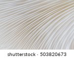 Abstract Background Macro Imag...
