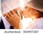 bride and groom kisses tenderly ... | Shutterstock . vector #503957287