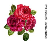 bouquet of red and pink roses.... | Shutterstock . vector #504051163