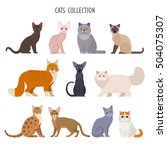 vector collection of  different ... | Shutterstock .eps vector #504075307