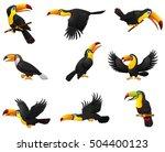 illustration of set of toucans... | Shutterstock . vector #504400123