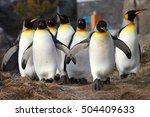 Penguins Walking In A Line...
