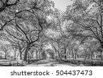 beautiful park in beautiful... | Shutterstock . vector #504437473