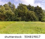 field and forest | Shutterstock . vector #504819817