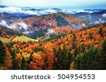 colorful autumn landscape with... | Shutterstock . vector #504954553