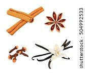 set of spices. vanilla flower... | Shutterstock .eps vector #504992533