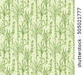 hand drawn sugarcane plants... | Shutterstock .eps vector #505021777
