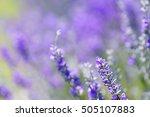 artistic composition dreamlike... | Shutterstock . vector #505107883