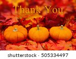 Thank You Message   Some Fall...