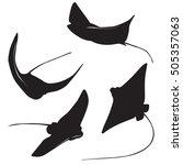 set of stingray silhouette and... | Shutterstock .eps vector #505357063