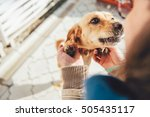 Stock photo woman cuddling her small yellow dog outdoor 505435117