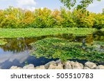 picturesque pond in the city... | Shutterstock . vector #505510783