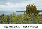beautiful fall scenes around...   Shutterstock . vector #505524103