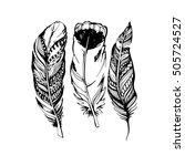 feather vector illustration art ...   Shutterstock .eps vector #505724527