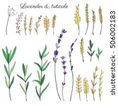 lavender flowers  triticale... | Shutterstock .eps vector #506002183