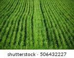 green grass field  piedmont  ... | Shutterstock . vector #506432227