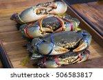 Flower Crab  Blue Crab  Blue...