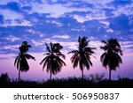 abstract silhouette of the palm ... | Shutterstock . vector #506950837