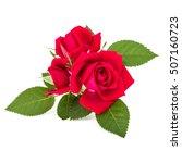 red rose flower bouquet... | Shutterstock . vector #507160723