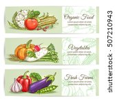 organic vegetables banners.... | Shutterstock .eps vector #507210943