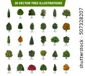 thirty different tree sorts... | Shutterstock .eps vector #507328207