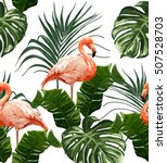 Pink Flamingos  Exotic Birds ...