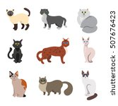 Set Of Cats Or Kittens With...