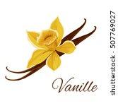 vanille. vector icon of vanilla ... | Shutterstock .eps vector #507769027