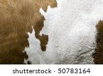 texture of a cow coat | Shutterstock . vector #50783164