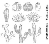 Hand Drawn Cactus Set. Cacti ...