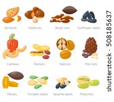 piles of different nuts... | Shutterstock .eps vector #508185637
