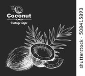 vector background with  coconut ... | Shutterstock .eps vector #508415893