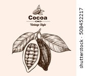 vector background with cocoa .... | Shutterstock .eps vector #508452217