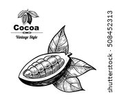 vector background with cocoa .... | Shutterstock .eps vector #508452313