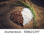 paddy rice brown rice white... | Shutterstock . vector #508621297