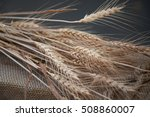 bunch of dry ripe wheat ears... | Shutterstock . vector #508860007