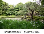 Pond At Heijan Jingu Shrine...