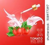 collagen serum tomato extract...   Shutterstock .eps vector #508977397