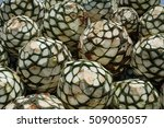Pineapples Or Agave Heads Pile...