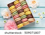colorful macaroons and rose... | Shutterstock . vector #509071807