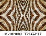 Zebra Skin For Background.