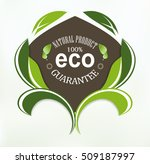 eco label leaves abstract ... | Shutterstock .eps vector #509187997