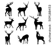 deer   vector   illustration | Shutterstock .eps vector #509188453