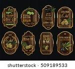 olive oil retro vintage... | Shutterstock .eps vector #509189533