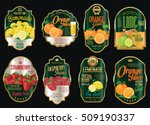 set of organic fruit retro... | Shutterstock .eps vector #509190337