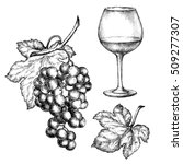 hand drawn illustrations of ...   Shutterstock . vector #509277307