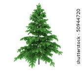 pine tree isolated on white... | Shutterstock . vector #50944720