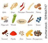 big set of culinary spices.... | Shutterstock .eps vector #509464747